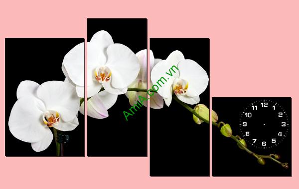 tranh-hoa-phong-lan-trang-treo-phong-khach-sang-trong-amia199