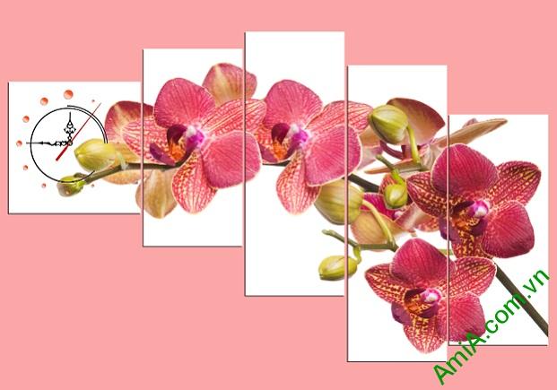 Bo-tranh-treo-phong-khach-phong-lan-ho-diep-amia265