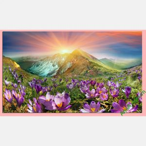 Tranh phong canh doi hoa nang treo tuong phong khach