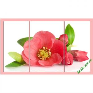 Tranh hoa trà đỏ treo phòng khách, phong ngủ ami 388-00