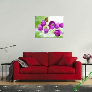 Tranh treo tường phòng khách hoa bướm amia 345-03