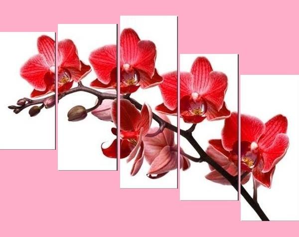 Tranh hoa Lan đỏ treo phòng khách hiện đại Amia 369