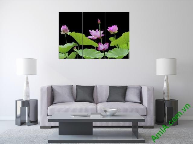 Tranh hoa Sen treo phòng khách ghép bộ 3 tấm Amia 365-01