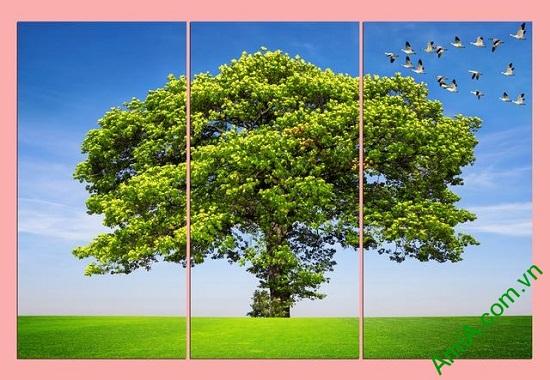 Tranh treo phòng khách thiên nhiên bộ 3 tấm Amia 358
