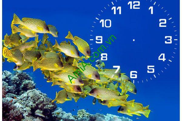 Đồng hồ tranh để bàn Đàn Cá Vàng Amia TDB 103