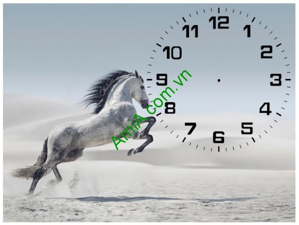 Tranh đồng hồ để bàn Ngựa phi nước đại Amia TDB 102