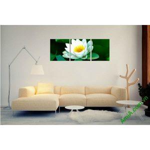 Tranh hoa Sen trắng trang trí phòng khách thư thái Amia 493-00