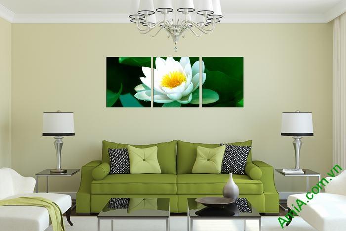 Tranh hoa Sen trắng trang trí phòng khách thư thái Amia 493-02