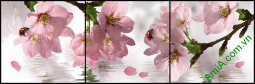 Tranh trang trí hiện đại hoa anh đào 3 tấm Amia 514
