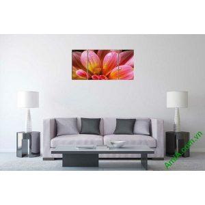 Tranh trang trí phòng khách cánh hoa thược dược AmiA 590-00