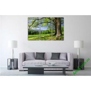 Tranh trang trí phòng khách cây xanh thiên nhiên Amia 529-00