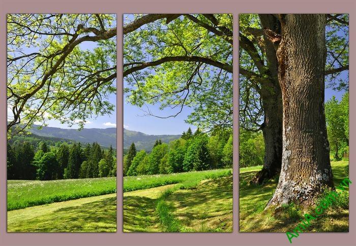 Tranh trang trí phòng khách cây xanh thiên nhiên Amia 529