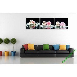 Tranh trang trí phòng khách hiện đại hoa đá Amia 553-00