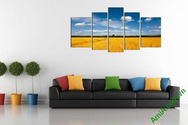 Tranh phong cảnh cánh đồng lúa chín khổ lớn AmiA 693-01