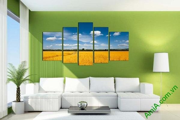 Tranh phong cảnh cánh đồng lúa chín khổ lớn AmiA 693-02