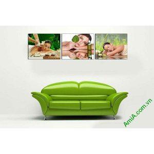 Tranh trang trí chăm sóc spa ghép bộ hiện đại AmiA 661-00