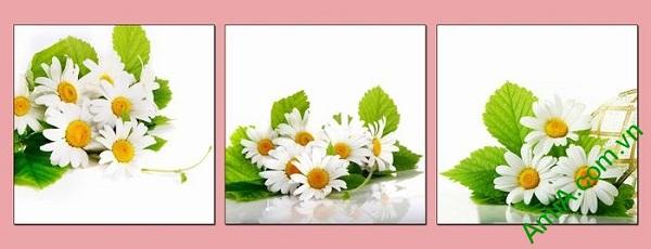 Tranh trang trí hoa cúc cho phòng khách, phòng ăn tươi mới