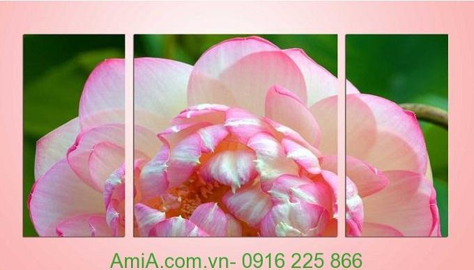 Hình ảnh mẫu Tranh bông hoa sen chớm nở treo phòng khách
