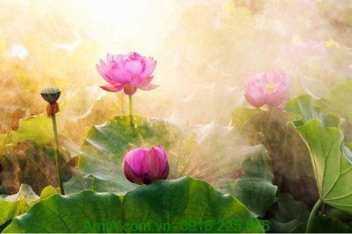Hình ảnh Tranh hoa sen nghệ thuật treo phòng khách một tấm