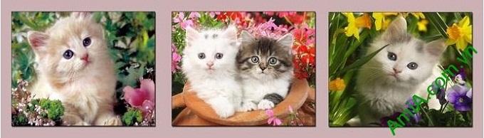 Hình ảnh mẫu thiết kế Tranh treo phòng của bé mèo con
