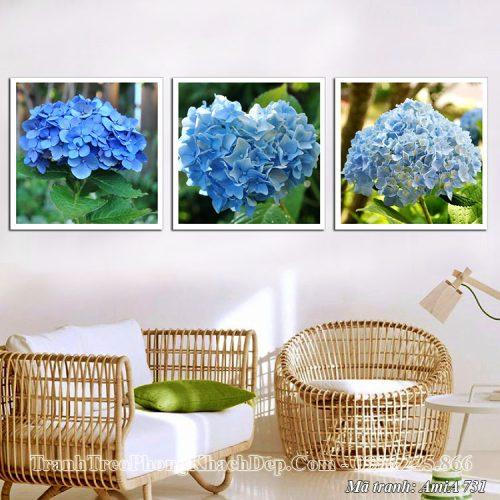 Tranh bộ 3 hoa cẩm tú cầu Amia 731 treo phòng khách