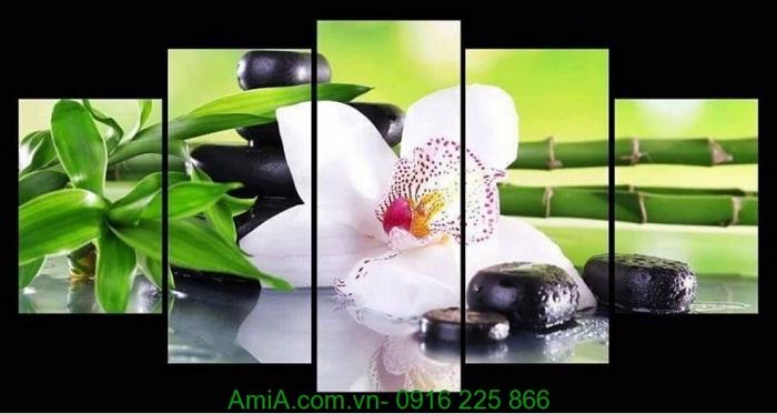 Hinh anh tranh spa hoa phong lan trang tri nha hang khach san