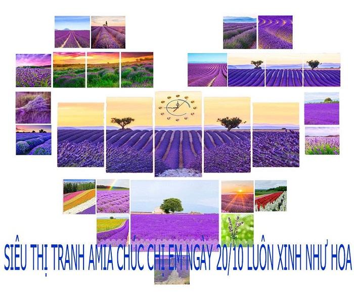 Fanpage chinh thuc cua sieu thi tranh AmiA 211 Vu Tong Phan Thanh Xuan Ha Noi