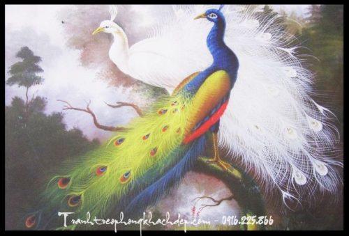 Hinh anh tranh canvas doi chim cong treo phong ngu vo chong