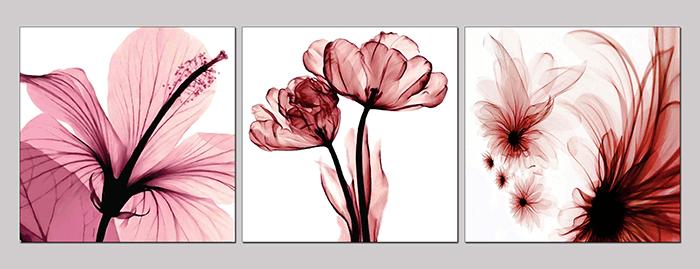 Hinh anh buc tranh hoa xray co nhi hoa dep