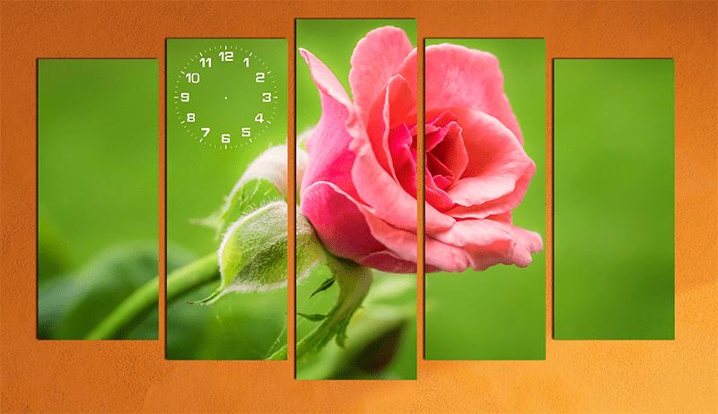 Hinh anh bong hoa hong lang man trang tri phong cuoi y nghia AmiA 141