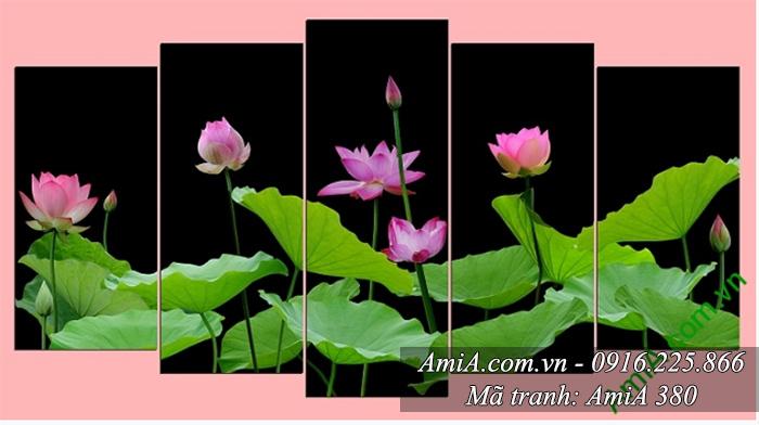 AmiA 380 tranh hoa Sen treo phong khach hanh Thuy hop tuoi Ty 1984