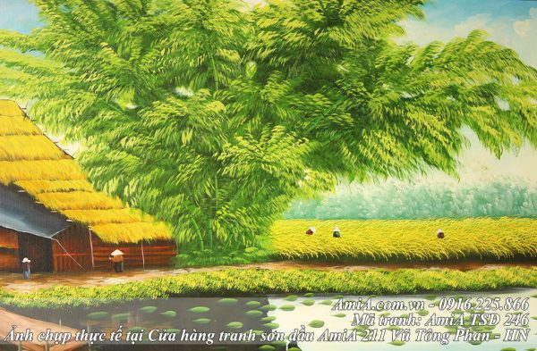 Tranh ve phong canh dong lua chin bang son dau