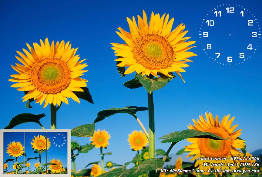 Tranh hoa hương dương mat troi dep AmiA 186