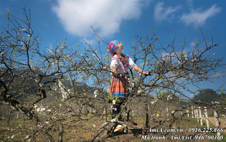 Hình ảnh người phụ nữ ở dân tộc vùng cao