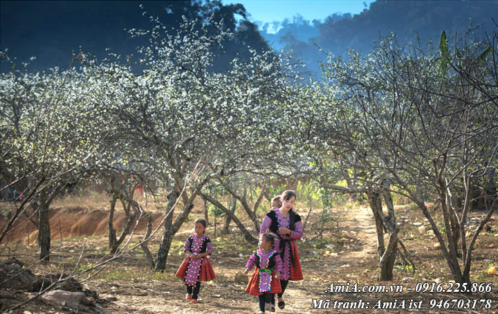 Hình ảnh mẹ con giữa đồi hoa lê trắng ở vùng núi cao