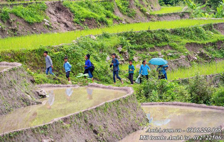 Hình ảnh các em bé đang đến lớp học ở vùng núi cao Tây Bắc
