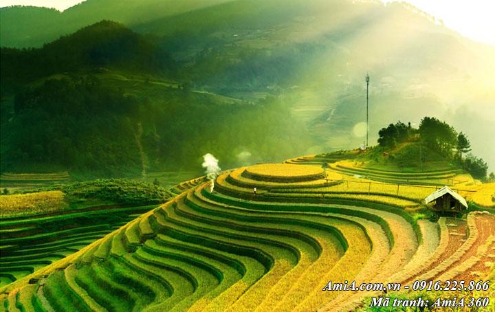 Hình ảnh tranh nghệ thuật phong cảnh ruộng bậc thang