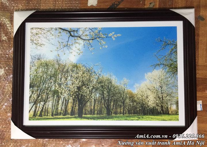Hình ảnh tranh phong cảnh hàng cây lê trắng giữa núi rừng thực tế