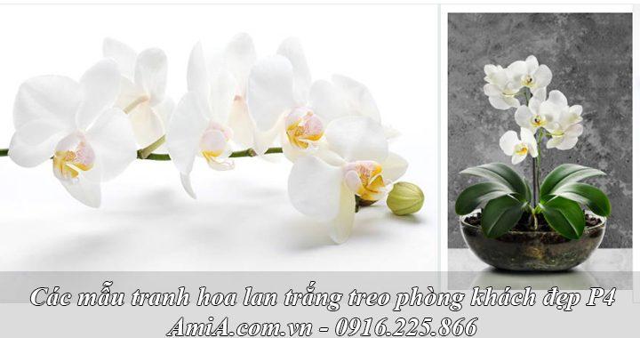 Hình ảnh tranh treo phòng khách hoa lan trắng đẹp tinh khôi