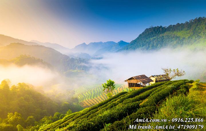 Hình ảnh ngôi nhà đẹp giữa phong cảnh núi rừng