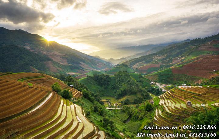 Hình ảnh ruộng lúa bậc thang trên núi đồi tây bắc