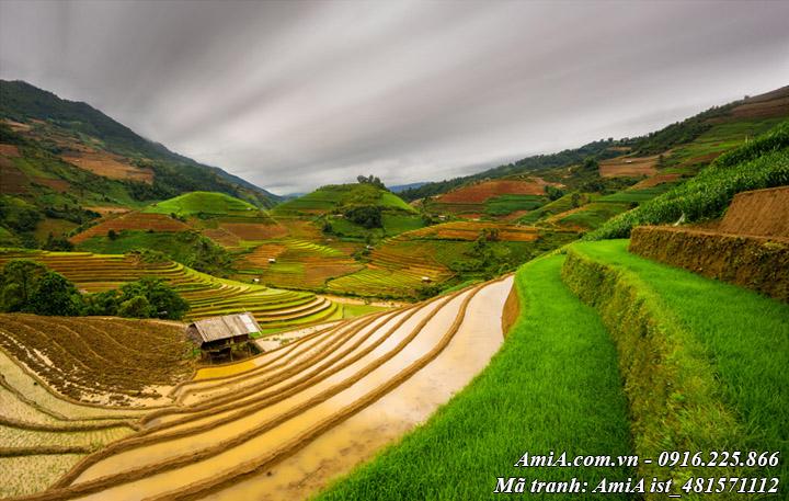Hình ảnh phong cảnh núi đồi tây bắc ruộng bậc thang