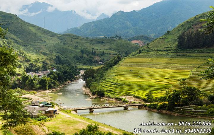 hình ảnh cây cầu bắc qua suối với phong cảnh đẹp núi rừng tây bắc