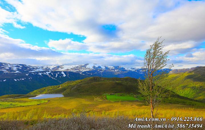 Hình ảnh phong cảnh núi rừng giữa mây trời trong xanh thật đẹp