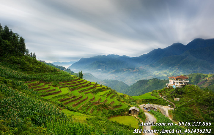 Hình ảnh đẹp phong cảnh trời mây núi rừng tây bắc
