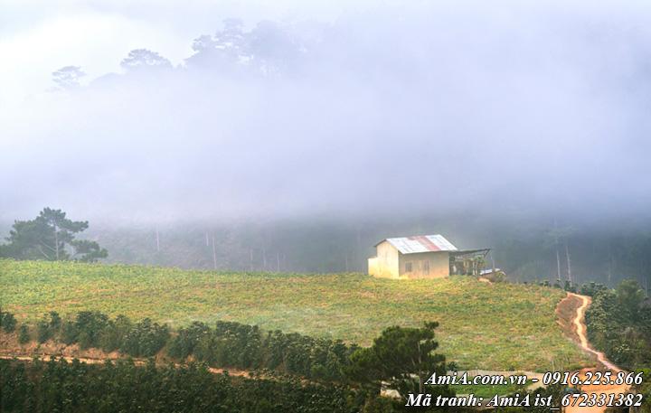 Hình ảnh phong cảnh đẹp giữa núi rừng
