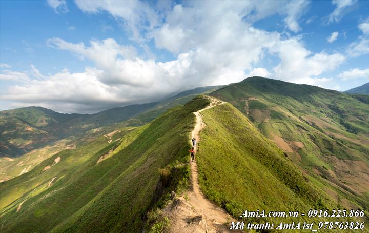 Hình ảnh phong cảnh đẹp đỉnh đèo tây bắc