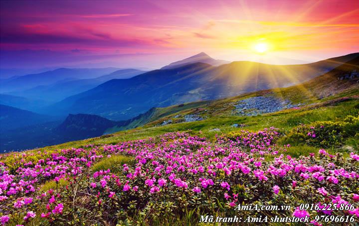 Hình ảnh tranh phong cảnh đồi hoa giữa núi rừng