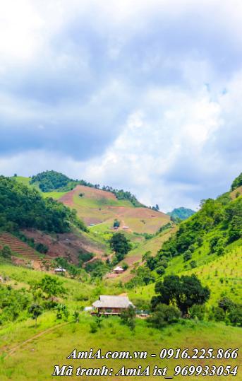 Hình ảnh phong cảnh thiên nhiên đồi xanh tây bắc