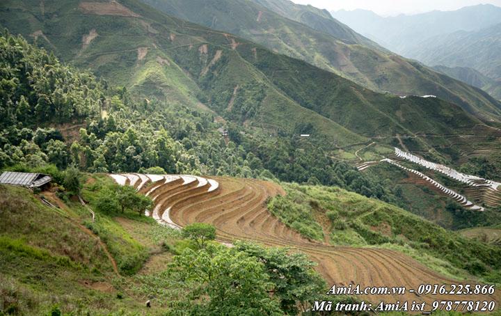 Hình ảnh phong cảnh đẹp núi đồi tây bắc